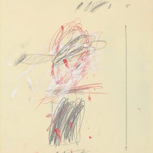 2010_NYR_02315_0236_000(cy_twombly_autoritratto)